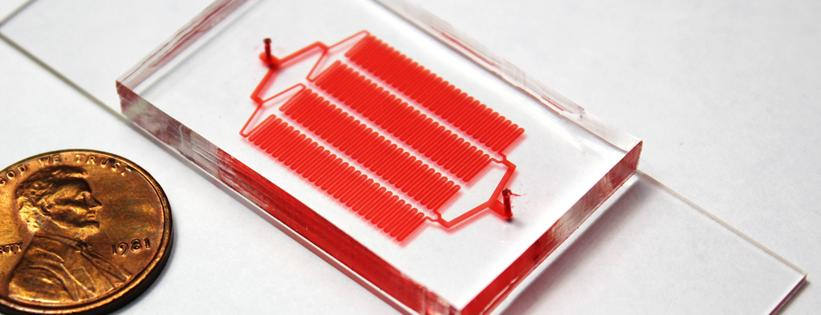 Microfluidic Chip for Rare Cell Isolation